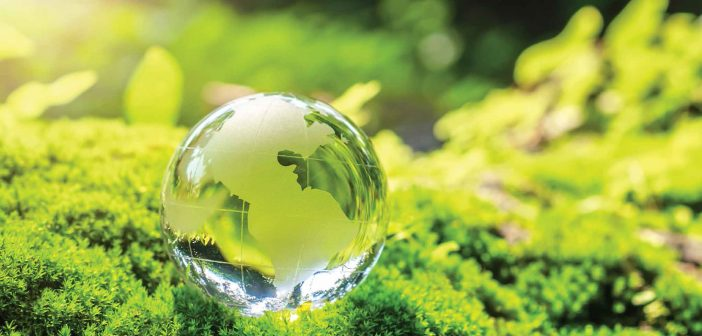 Accounting for Environmental Sustainability